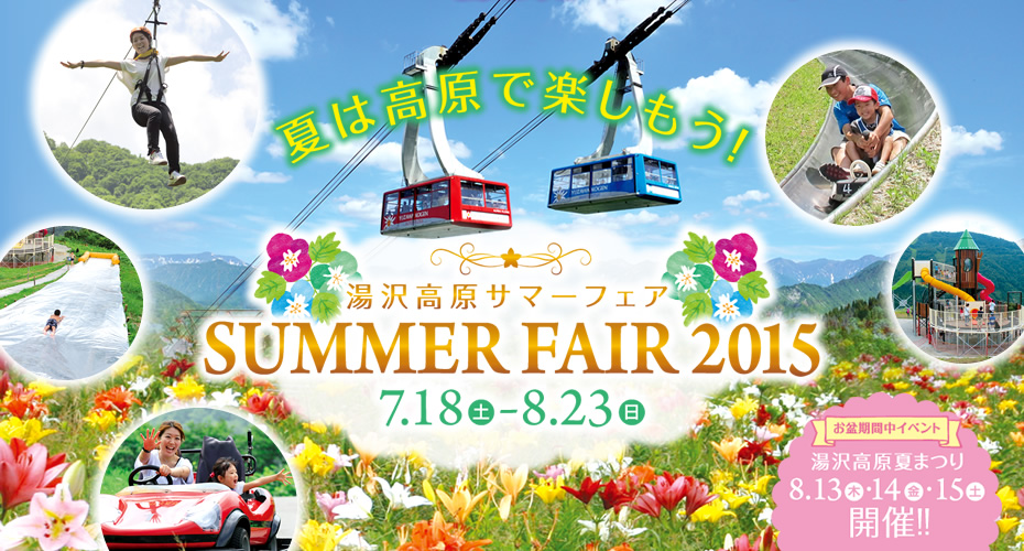 image_summer_fair2015